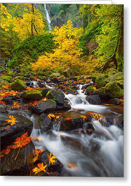 Starvation Creek Falls Greeting Card