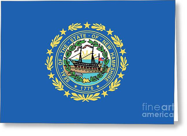 State Flag Of New Hampshire Greeting Card by American School