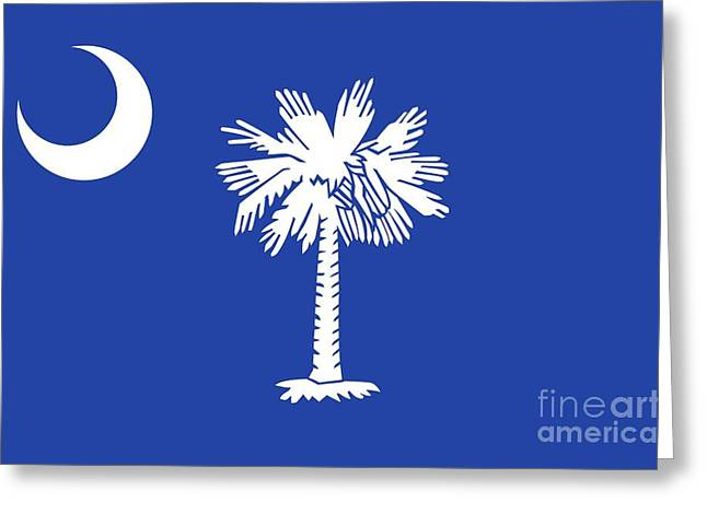 State Flag Of South Carolina Greeting Card by American School