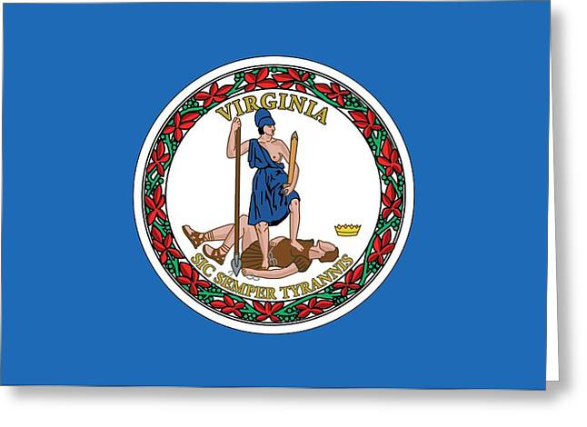 State Flag Of Virginia Greeting Card by American School