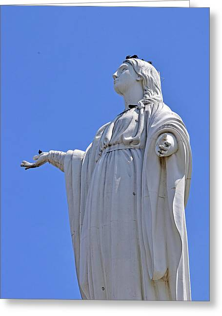 Statue Of The Virgin Mary No. 245-1 Greeting Card by Sandy Taylor