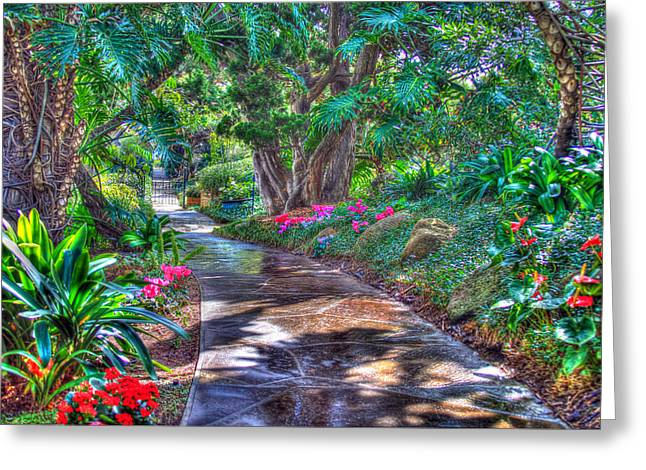 Stay On Your Path Greeting Card by TC Morgan