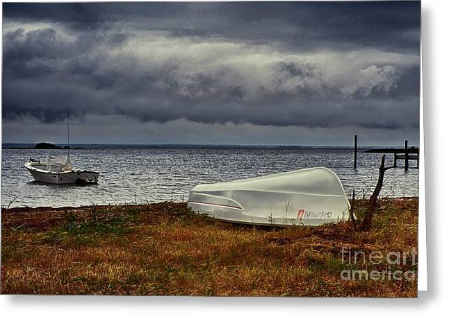 Staying Ashore Greeting Card by Mark Miller