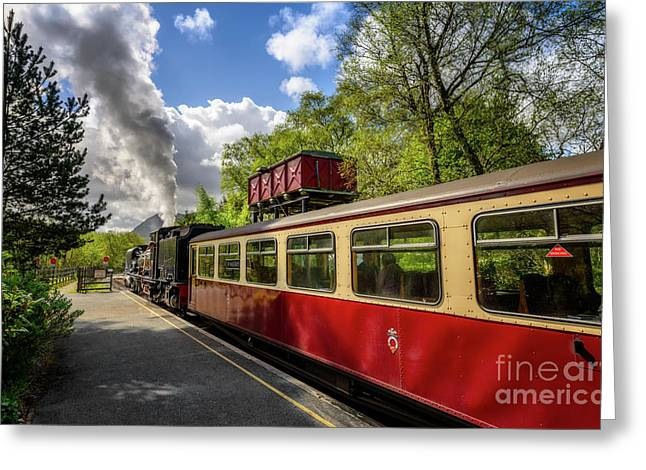 Steam Loco 87 Greeting Card by Adrian Evans