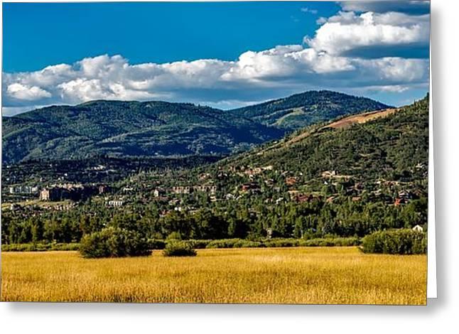 Steamboat Springs Meadow Greeting Card