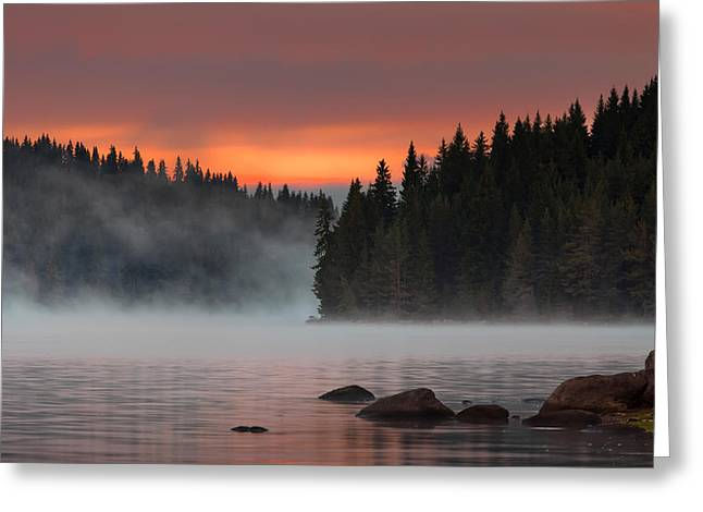 Pine-mist Greeting Cards - Steaming lake Greeting Card by Evgeni Dinev