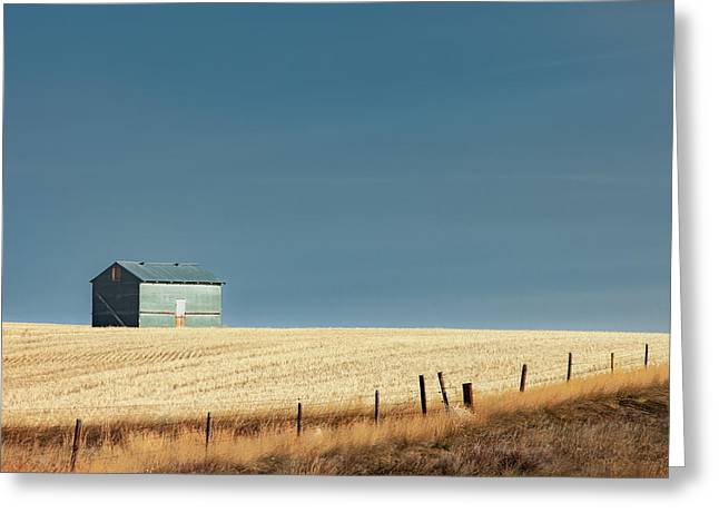 Steel Clad Shed Greeting Card by Todd Klassy