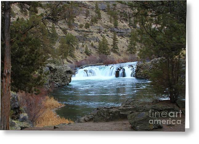 Steelhead Falls Greeting Card