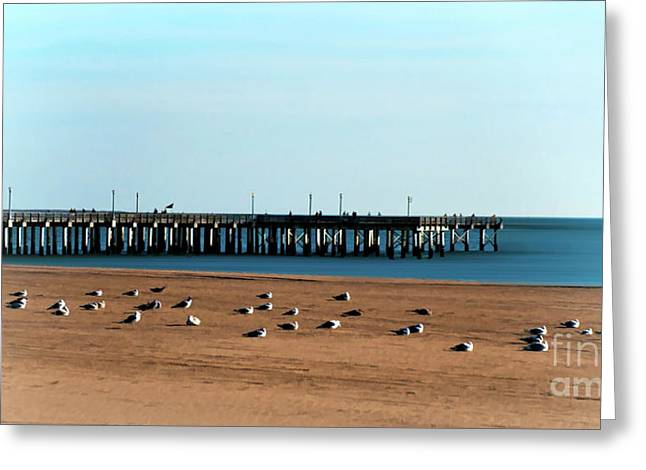 Steeplechase Pier Greeting Card by Arnie Goldstein