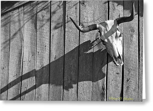 Steer Skull On Barn Greeting Card by Richard Singleton