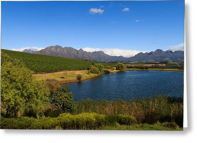 Stellenbosch   Greeting Card