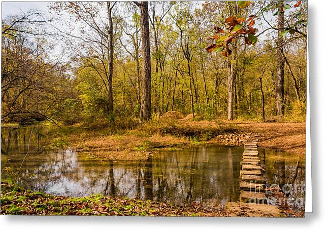 Stepping Stones At Rock Spring - Natchez Trace Greeting Card by Debra Martz