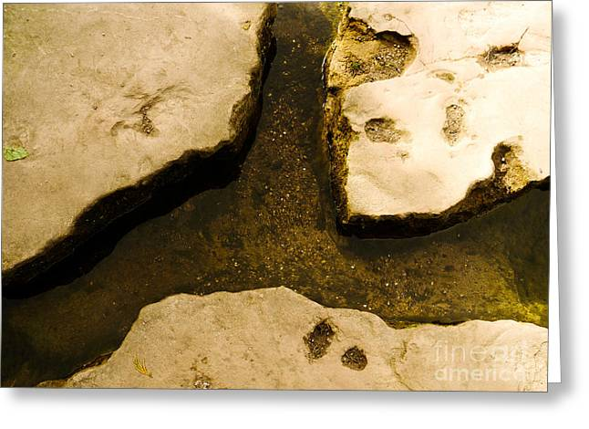 Stepping Stones Greeting Card by Jamel Watson