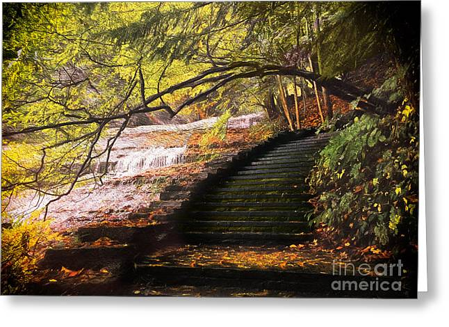 Steps At Buttermilk Falls Greeting Card by Robert Gaines