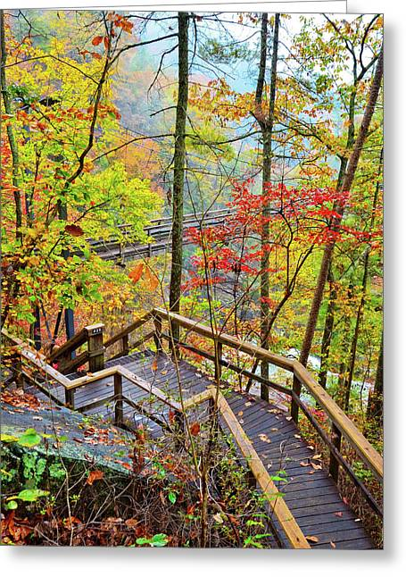 Steps To The Gorge Greeting Card