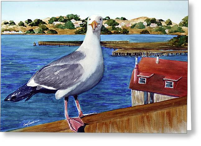 Steve Greeting Card by Susy Soulies