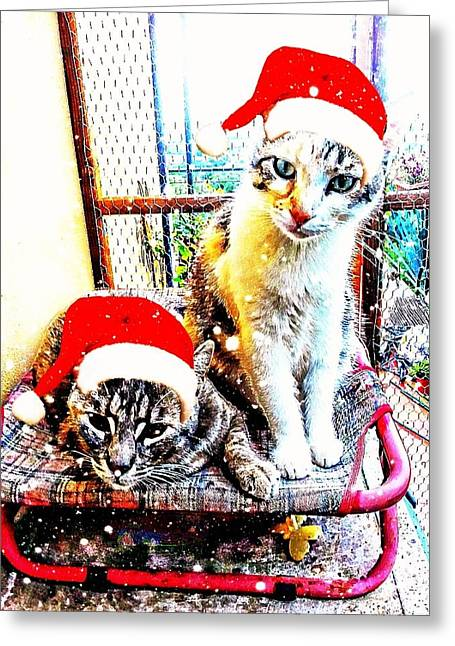 Stevie Mouse And Emmy Waiting For Christmas Greeting Card