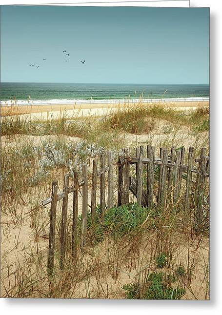 Stick Fences On Dunes Greeting Card by Carlos Caetano