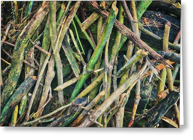 Stick Pile At Retzer Nature Center Greeting Card by Jennifer Rondinelli Reilly - Fine Art Photography