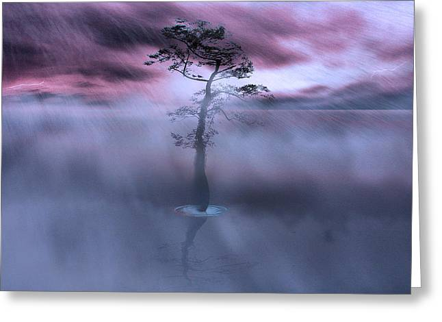 Stick Together The Storm Will Pass Greeting Card by Gray  Artus