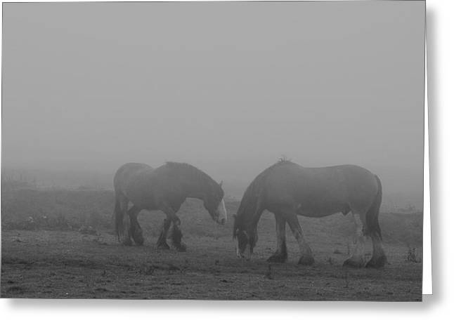 Still Dampened And Shrouded In Mist  Greeting Card by Paul Davenport