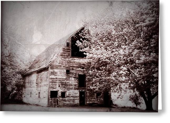Barn Digital Greeting Cards - Still Here Greeting Card by Julie Hamilton
