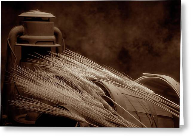 Still Life With Wheat I Greeting Card by Tom Mc Nemar