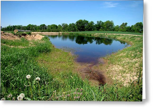Still Pond Reflections Greeting Card by Todd Zabel