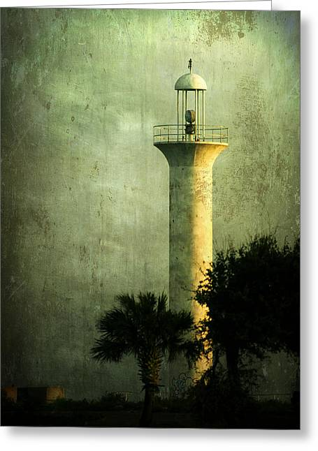 Still Standing Greeting Card by Joan McCool