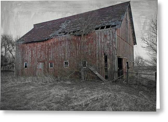 Still Standing Greeting Card by Kathy M Krause