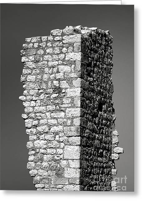 Still Standing Greeting Card by Olivier Le Queinec