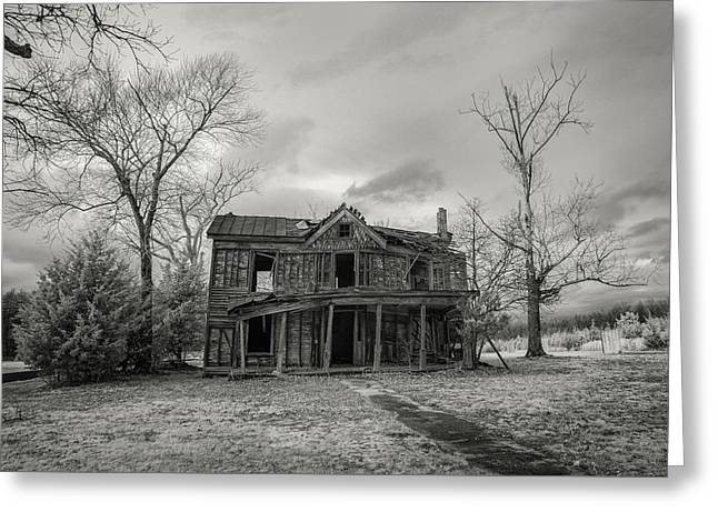 Still Standing Greeting Card by Paul Seymour