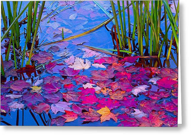 Still Waters Greeting Card by Ron Jones