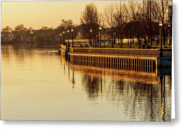 Stockton In Autumn 1 Greeting Card by Terry Davis