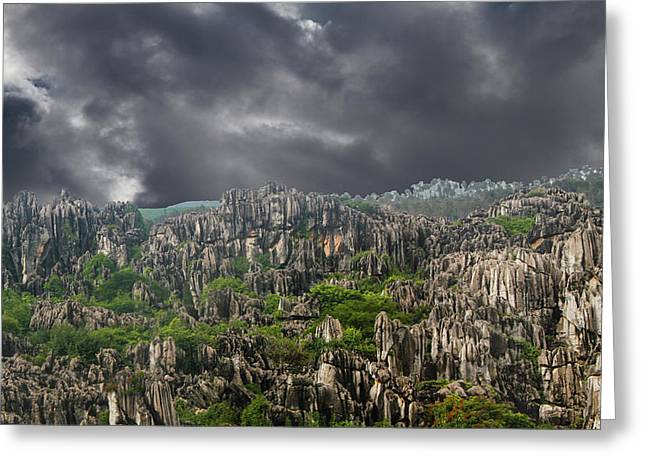 Stone Forest 3 Greeting Card