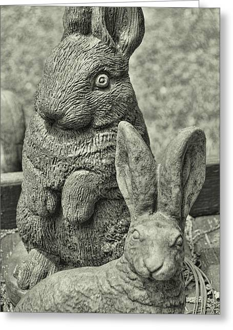 Stone Bunnies Greeting Card by JAMART Photography