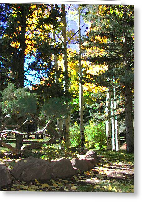 Stone Park Trails Greeting Card