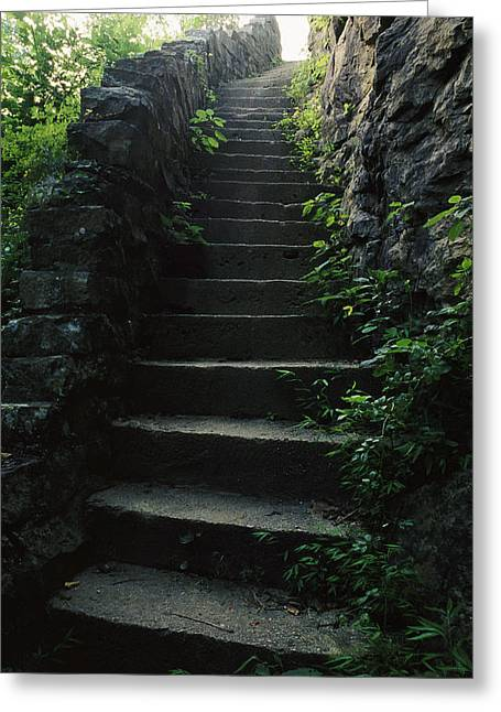The South Photographs Greeting Cards - Stone Stairs Lead To The Top Of Morgans Greeting Card by Stephen Alvarez