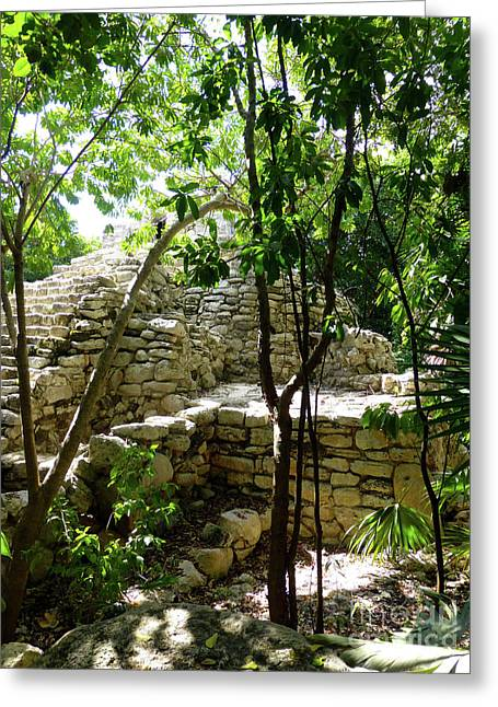 Greeting Card featuring the photograph Stone Steps In The Jungle by Francesca Mackenney