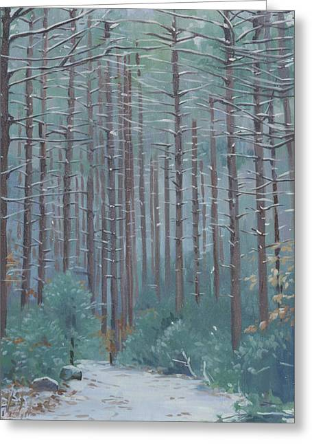 Stone Trail In Winter Greeting Card