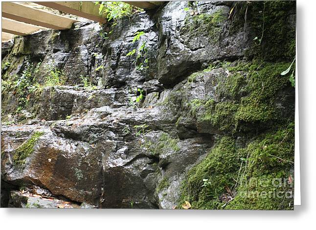 Stones Fallingwater  Greeting Card by Chuck Kuhn