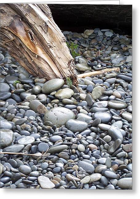 Stones Greeting Card by Gene Ritchhart