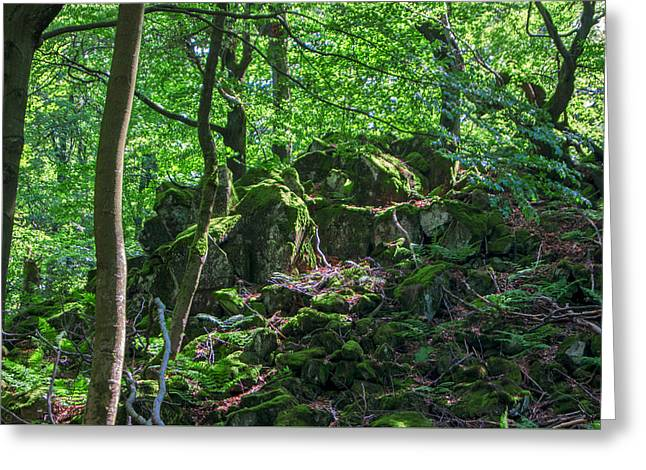 Stones In A Forest In Vogelsberg Greeting Card