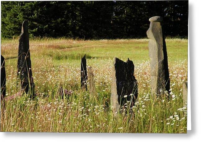Stones In Summer Greeting Card by Donna Meadows