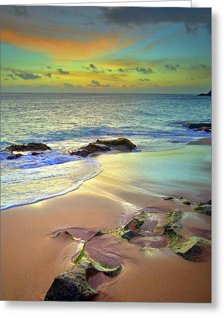 Greeting Card featuring the photograph Stones In The Sand At Sunset by Tara Turner