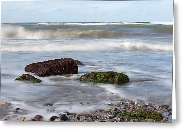 Stones, Seaweed And Waves Greeting Card