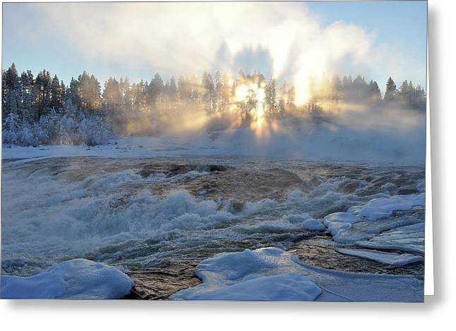 Storforsen, Biggest Waterfall In Sweden Greeting Card