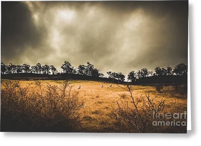 Storm Clouds Over York Plains Greeting Card