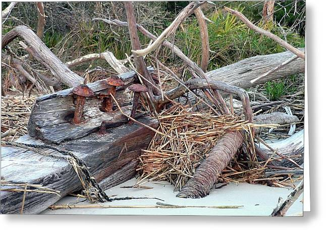 Al Powell Photography Usa Greeting Cards - Storm Debris Greeting Card by Al Powell Photography USA