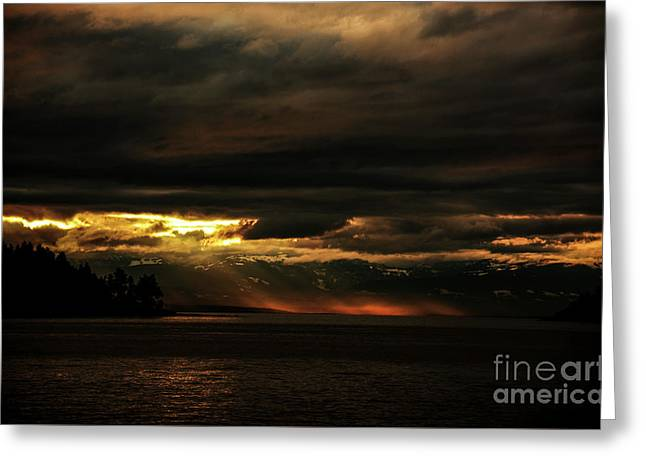 Storm Greeting Card by Elaine Hunter